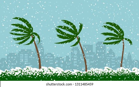 Analamic snow storm Grayson in the USA. Frost and snow in the south. palm trees in the snow. flat vector illustration isolated