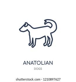Anatolian Shepherd Dog dog icon. Anatolian Shepherd Dog dog linear symbol design from Dogs collection. Simple outline element vector illustration on white background.