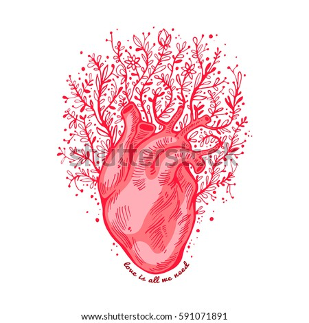 Anatomical Heart Flowers Tagline Love All Stock Vector (Royalty Free ...