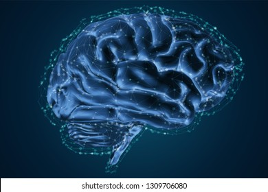anatomical human brain, mesh vector, scientific article design and medical booklet