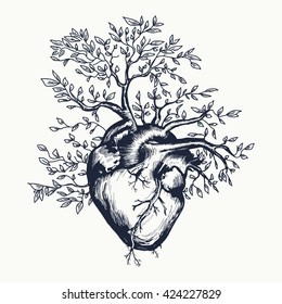 Anatomical human heart from which the tree grows heart tattoo art vector illustration