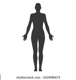 Anatomical Position Anterior View Female Body Shape Vector Silhouette