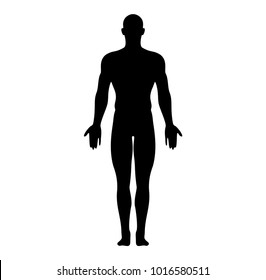 Anatomical Position Anterior View Male Body Silhouette Vector Illustration