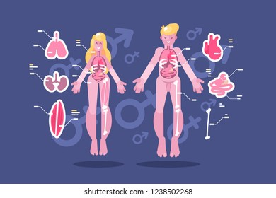 Anatomy of human body flat infographic. Man and woman bodies system of internal organs and skeletal legs system vector illustration. Medical educational chart with footnotes