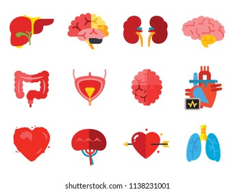 Anatomy Icon Set. Heart Brain Kidneys Liver Lungs Heart With Love Arrow Spleen Cerebrum Stomach Intestine Alzheimer Bladder Human Heart