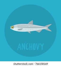 anchovy  flat icon
