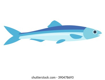 Anchovy vector illustration isolated on a white background