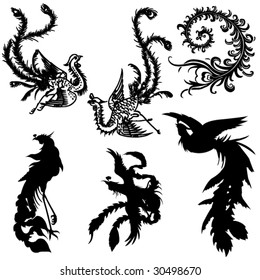 Ancient Chinese mythology the phenix animal