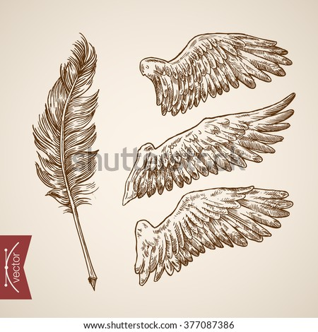angel bird wings feather template icon のベクター画像素材