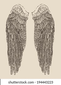 angel wings illustration, engraved style, hand drawn, sketch