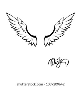 angel wings illustration vector set