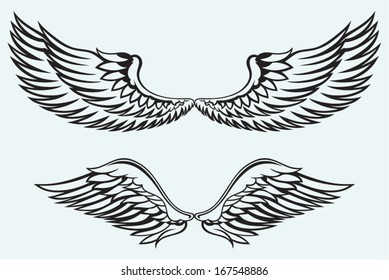 Angel wings isolated on blue batskground