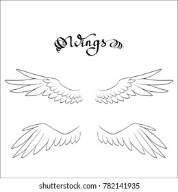angel wings, lettering, drawing vector