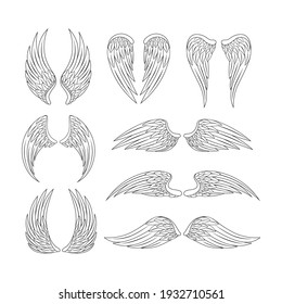 Angel wings set. Black and white vector illustration