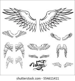 angel wings vector, lettering, drawing