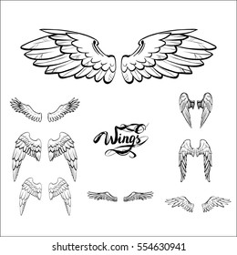 angel wings vector, lettering, drawing