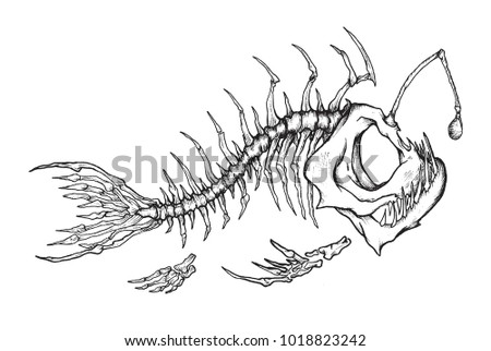 angler fish skeleton mascot vector illustration stock vector rh shutterstock com angler fish diagram labeled