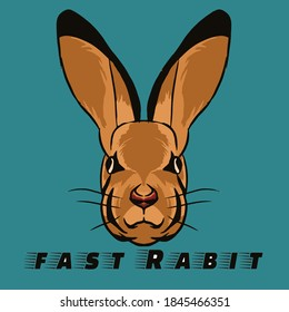 Rabbit pissed off SO I