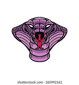 Angry Cobra Snake head