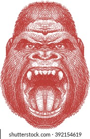 Angry gorilla face