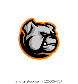 Angry modern bulldog head. Sports logo mascot