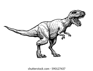Angry tyrannosaurus rex with open huge mouth, sketch. Hand-drawn carnivorous dinosaur. Animal vector illustration