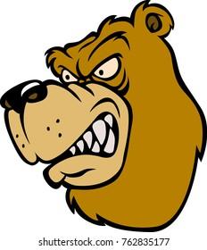 A angry wild bear