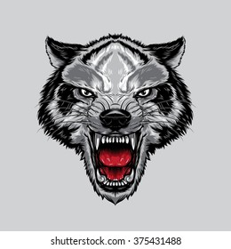 Angry Wolf Face. An angry wolf face with open mouth showing canine.