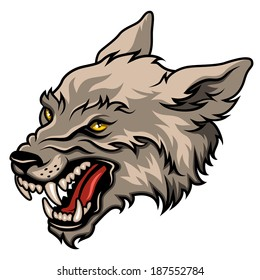 Angry wolf head, colorful vector illustration isolated on white