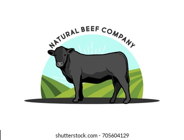 Angus Cattle Beef Illustration easy to edit