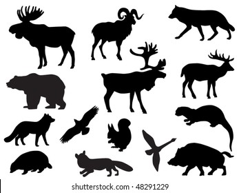 graphic regarding Free Printable Forest Animal Silhouettes referred to as Wildlife Silhouette Pics, Inventory Illustrations or photos Vectors