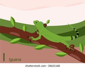 Animal alphabet flash card, I for iguana