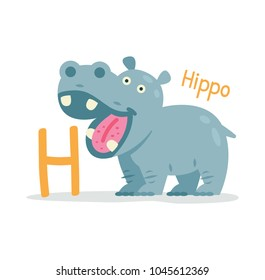 animal alphabet - H for Hippo. Cute and sweet animal hippopotamus. 100% vector