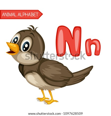Image of: Funny Cartoon Animal Alphabet Is For Nightingale Vector Illustration Of Happy Nightingale Cute Shutterstock Animal Alphabet Nightingale Vector Illustration Stock Vector