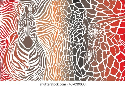 Animal background of zebra and giraffe