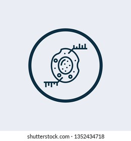 Animal cell structure with: nucleus, mitochondria, membrane, centrosome, ribosome, smooth and rough endoplasmic reticulum, black and white Vector. line icon.