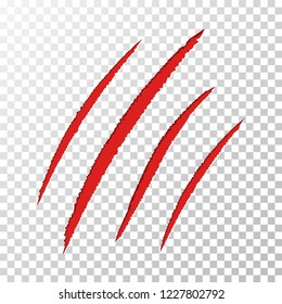 Animal claws scratches on transparent background. Claws scratching. Red bloody claw scars. Dog, cat, lion, tiger or bear paw print. Four nails trace. Vector illustration