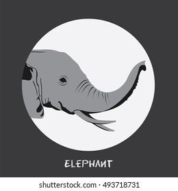 Animal Elephant Vector illustration isolated on slate gray