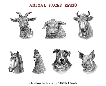 Animal faces hand draw engraving style black and white clip art isolated on white background