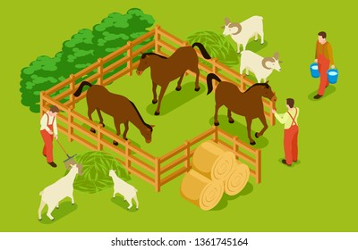 Animal farm, livestock with horses, goats, sheeps and workers isometric vector illustration