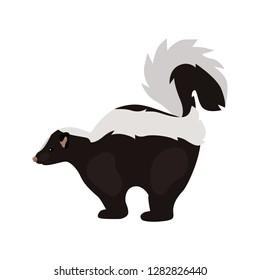 animal flat color skunk icon