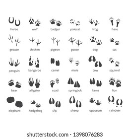 animal footprint icons set on a white background