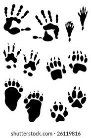 animal footprint stamps and human hands print - vector illustration