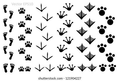 Animal footprints set