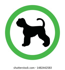 Animal friendly sign with black silhouette. Schnauzer. Dogs are welcome. Vector pet allowed illustration. Green circle. Illustration isolated on white.