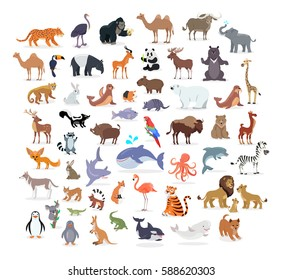 Animal full length portraits collection on white. Vector poster of domestic and wild animals from various countries, lion family, green alligator, colourful parrot on branch, whale splashing water
