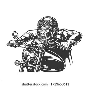 Animal head motorcyclist vintage concept with ferocious gorilla head biker in moto helmet and goggles riding motorcycle in monochrome style isolated vector illustration