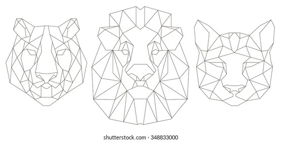 Africa Lion Images Stock Photos Vectors Shutterstock