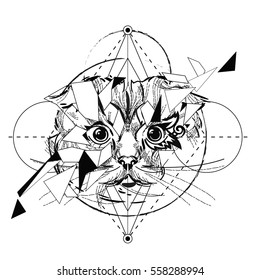 Animal head triangular icon , geometric trendy line design. Vector illustration ready for tattoo or adult relax anti stress coloring book. Scottish Cat head low-poly sketch hand drawn