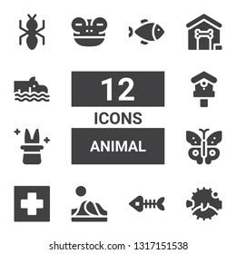 animal icon set. Collection of 12 filled animal icons included Blowfish, Fish bones, Dune, Hospital, Butterfly, Magician, Birdhouse, Frog, Dog house, Hippo, Ant, Fish